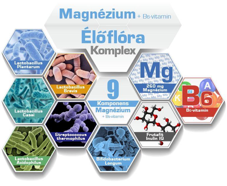 magnézium komponensek